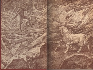 Spike of Swift River endpapers