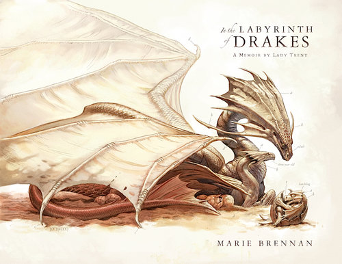 Image result for In the Labyrinth of Drakes by Marie Brennan